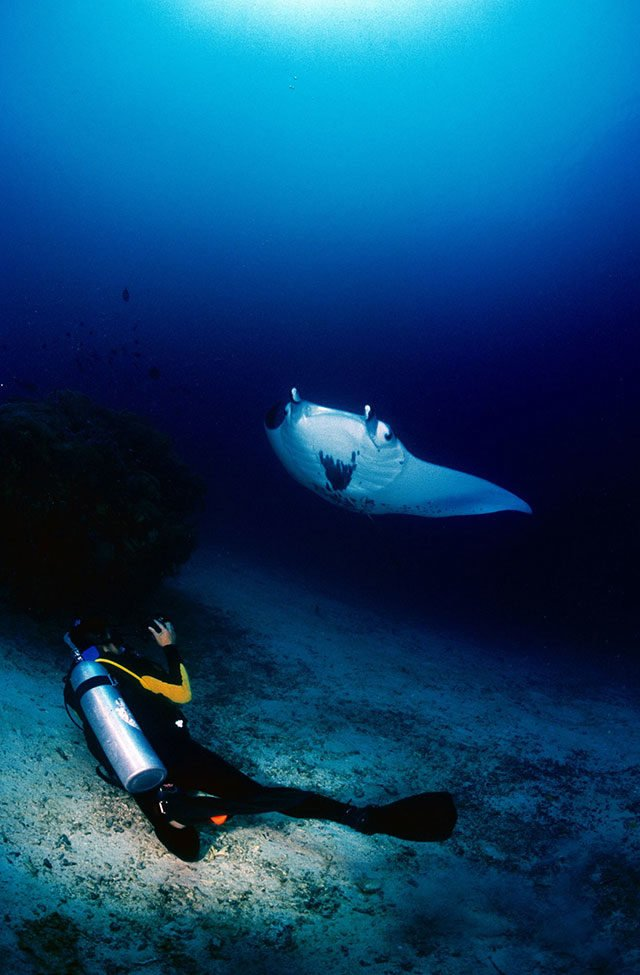 top-10-diving-spot-raja-ampat
